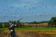 Prepoved lova