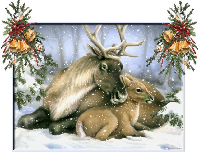 Click image for larger version.  Name:ReindeerBabyMumBells.jpg Views:91 Size:62.8 KB ID:16403