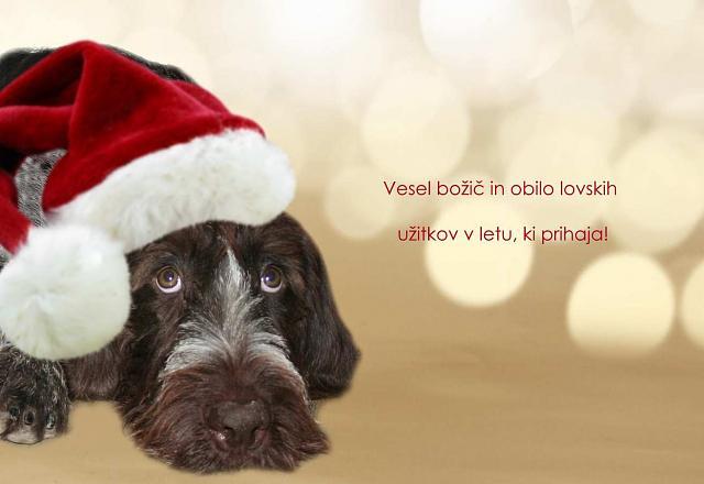 Click image for larger version.  Name:čestitka_.jpg Views:72 Size:58.7 KB ID:16404